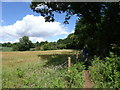 SO8892 : Wombourne Footpath by Gordon Griffiths