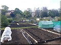 NZ2467 : Allotment Gardens, Rectory Road, Gosforth, Newcastle upon Tyne by Graham Robson