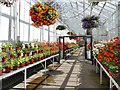 NJ9304 : Duthie Park: plant nursery in the winter gardens by Stephen Craven