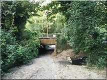 TQ7454 : Unicumes Lane, Fant by Chris Whippet