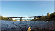 NZ2463 : Paddling under the King Edward VII bridge by Andy Waddington