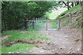 SO2003 : Gate & cattle grid on forest track, Cwm Big by M J Roscoe