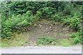 SO2002 : Small landslip, Cwm Big by M J Roscoe