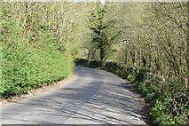 TQ5641 : Broomhill Rd by N Chadwick