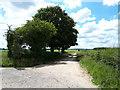 ST9185 : Public bridleway, Malmesbury Common by Vieve Forward
