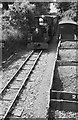 SH5938 : 'Linda' and train approaching Minffordd – 1965 by Alan Murray-Rust