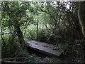TF0842 : Little bridge - don't miss it by Ian Paterson