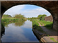 SJ9621 : Staffordshire and Worcestershire Canal  near Stafford by Roger  Kidd