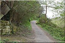 TQ5639 : Footpath, Still Green by N Chadwick
