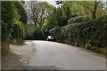 TQ5639 : Nevill Park by N Chadwick