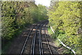 TQ5940 : The Hastings Line by N Chadwick