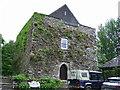 W4744 : Castles of Munster: Timoleague, Cork by Garry Dickinson