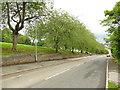 SE2632 : Fawcett Lane, Lower Wortley by Stephen Craven
