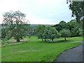 SE2632 : Western Flatts Cliff Park: paths by Stephen Craven