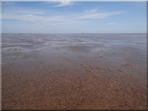 TF4747 : The Wash at Low Tide - at ground level by Ian Paterson