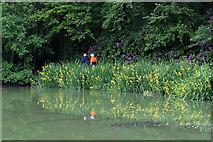 NT4227 : The Upper Lake at Bowhill by Walter Baxter