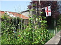 ST3831 : British is best for beans by Neil Owen