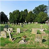 TL4568 : Cottenham: in All Saints' churchyard by John Sutton
