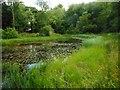NS5674 : Small lochan, Dougalston Golf Course by Richard Sutcliffe