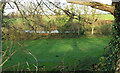 SS4926 : Meadow, West Webbery by Derek Harper