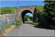 NO3002 : Railway Bridge, Markinch by Bill Kasman