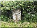 SE2345 : Leathley Lane milepost by Stephen Craven