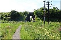 NO3001 : The Braes Loan Trail by Bill Kasman