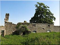 NY9837 : Shield Ash - the farmhouse by Mike Quinn