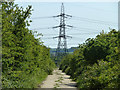 TQ6974 : Military road from Shornmead Fort by Robin Webster
