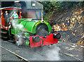 SX0766 : Bodmin & Wenford Railway - Judy by Chris Allen
