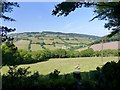 ST0933 : View from Willett Hill, West Somerset by Marika Reinholds