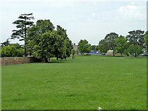 TQ6473 : Dashwood Open Space, Gravesend by Robin Webster