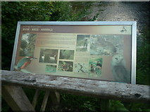 SO3958 : Sign at Pembridge Village Green Conservation Area by Fabian Musto