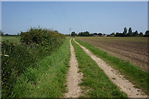 SE7843 : Track leading to Gale Carr Lane by Ian S