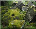 SK2579 : Moss covered millstone by Graham Hogg