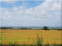 SU9201 : Looking over fields from bank above N. Bersted Bypass by Jeff Gogarty