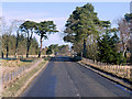 NT2356 : A701 near Leadburn by David Dixon