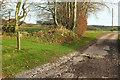 ST0131 : Bridleway to East Withy Farm by Derek Harper