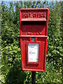 TG1318 : School Road Postbox by Adrian Cable