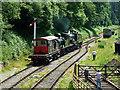 SO6107 : Dean Forest Railway - overkill! by Chris Allen