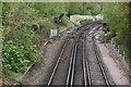 TQ5838 : Hastings Line by N Chadwick