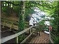 SK3272 : On the boardwalk at Upper Linacre Reservoir by Graham Hogg