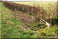 ST0134 : Permissive path by the mineral railway by Derek Harper
