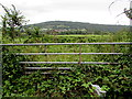 SO5011 : Disused field gate at the southern edge of Monmouth by Jaggery