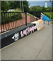 NS5574 : New artwork at Gavin's Mill Underpass (1) by Richard Sutcliffe