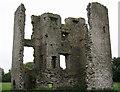 N7760 : Castles of Leinster: Moymet, Meath (1) by Garry Dickinson