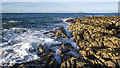 J5384 : Shoreline, Ballymacormick Point by Rossographer