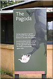 NS2209 : History of the Pagoda, Culzean Country Park by Billy McCrorie