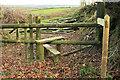 SS9535 : Footpath, Goosemoor by Derek Harper