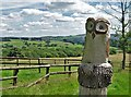 SJ9365 : Carved owl and south eastern view from Hawkslee by Neil Theasby